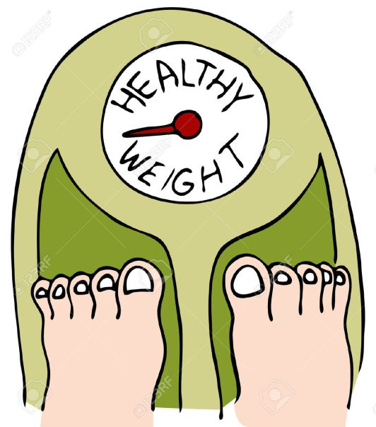 8535053-An-image-of-a-person-standing-on-a-scale--Stock-Vector-weight-loss-healthy